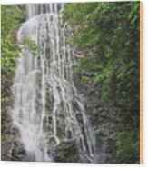 Mingo Falls In The Spring Wood Print