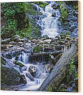 Mingo Falls Two Wood Print