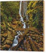 Mingus Falls Wood Print