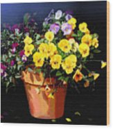 Mini Pansy Pot Wood Print