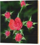 Mini Roses Wood Print