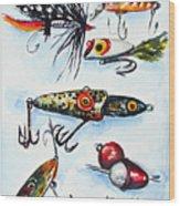 Mini Study- Fishing Lures Wood Print