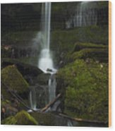 Mini Waterfall In The Forest Wood Print