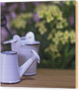 Miniature Gardening Kit With Pink And Yellow Kalanchoe Backgroun Wood Print