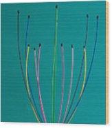 Minimal Colours 12 Wood Print