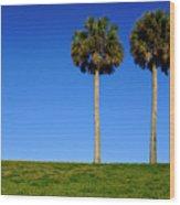 Minimal Palm Trees On A Hill In Saint Augustine Florida Wood Print