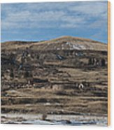 Mining Town Panorama Wood Print by Angus Hooper Iii