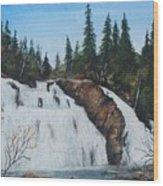 Mink Falls Wood Print