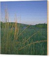 Minnesota Prairie Moon Rise Wood Print