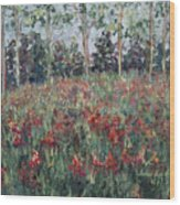 Minnesota Wildflowers Wood Print by Nadine Rippelmeyer