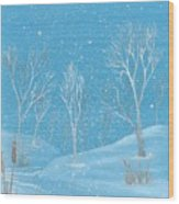 Minnesota Winter... No. Two Wood Print by Robert Meszaros