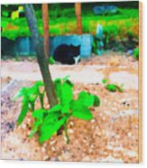 Minnie And The Beanstalk 2 Wood Print