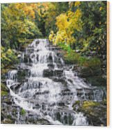 Minnihaha Falls In Autumn Wood Print