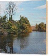Minster Pool Lichfield Wood Print