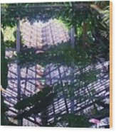 Mirror Image IIi Wood Print