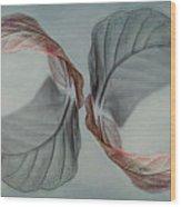Mirror Image Wood Print