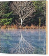 Mirror Mirror On The Pond Wood Print