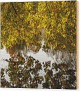 Mirrored Tree Wood Print
