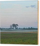 Pink  Sky And Misty Pasturess Wood Print