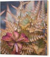 Misplaced Iris Wood Print