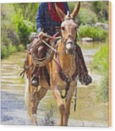 Miss Aleto And The Cowboy Iv Wood Print