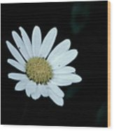 Miss Daisy Wood Print