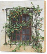 Mission Window With Yellow Flowers Wood Print