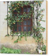 Mission Window With Yellow Flowers Vertical Wood Print