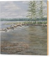 Mississippi Headwaters 2  Wood Print