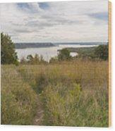 Mississippi River Lake Pepin 9 Wood Print