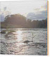 Mississippi River Victory At Sea Wood Print