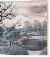Missouri Botanical Garden Infrared Pond Blue Wood Print