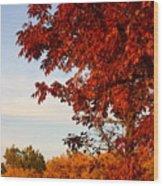 Missouri Fall Wood Print