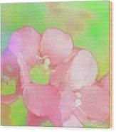 Missouri Wildflowers 5  - Polemonium Reptans -  Digital Paint 7 Wood Print