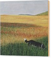 Missy In The Field Wood Print