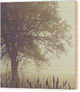Mist Wood Print by Odd Jeppesen