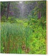 Mist On The Meadow  Wood Print