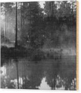 Mist On The Pond Wood Print