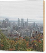 Mist Over Montreal Wood Print