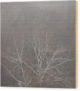 Mist Over The Hudson Wood Print
