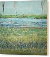 Mistery Pond In Orchard Park Ny Wood Print