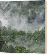 Mistico De San Jose De Pacifico Wood Print