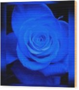 Misty Blue Rose Wood Print