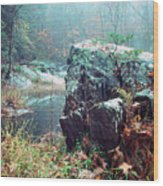 Misty Chopawamsic Creek Autumn Day Wood Print