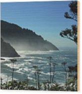 Misty Coast At Heceta Head Wood Print