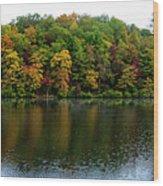 Misty Day On Lake Winfield Scott Wood Print