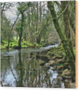 Misty Day On River Teign - P4a16017 Wood Print