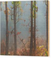 Misty Indian Morning Wood Print