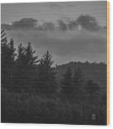 Misty Maine Woods Black And White 2 Wood Print