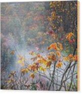 Misty Maple Wood Print